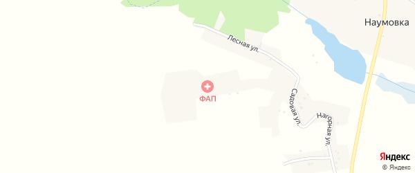 Октябрьская улица на карте села Наумовки с номерами домов