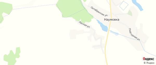 Карта села Наумовки в Белгородской области с улицами и номерами домов