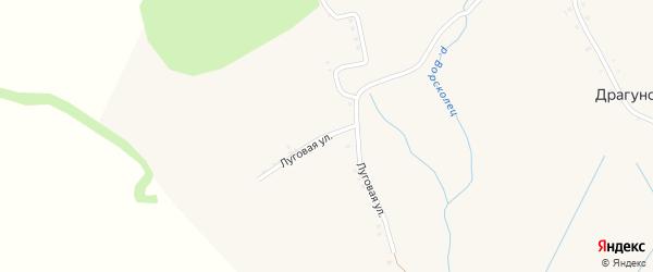 Луговая улица на карте Драгунского села с номерами домов