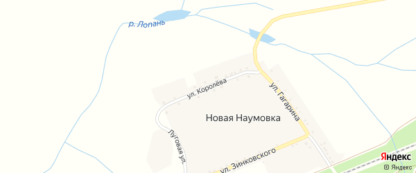 Улица Королева на карте села Новой Наумовки с номерами домов