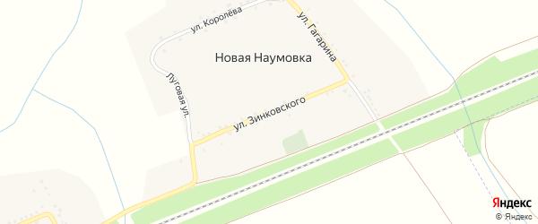 Улица Зинковского на карте села Новой Наумовки с номерами домов