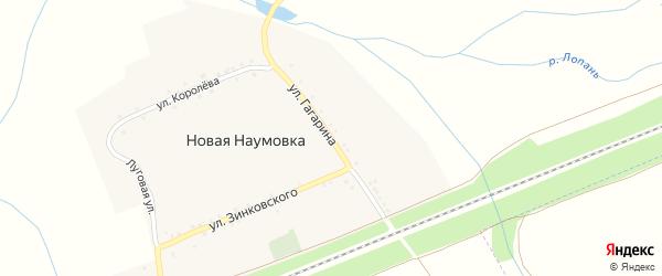 Улица Гагарина на карте села Новой Наумовки с номерами домов