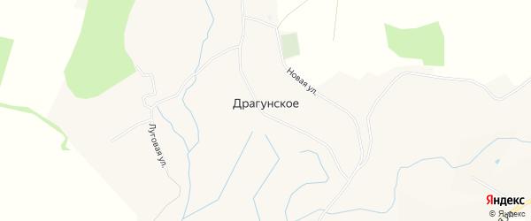 Карта Драгунского села в Белгородской области с улицами и номерами домов