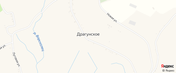 Центральный переулок на карте Драгунского села с номерами домов