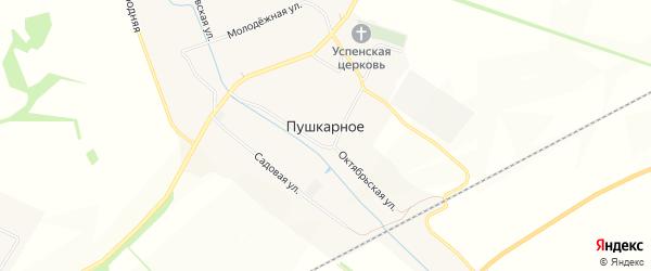 Карта Пушкарного села в Белгородской области с улицами и номерами домов
