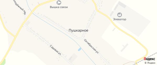 Пушкарная улица на карте Пушкарного села с номерами домов