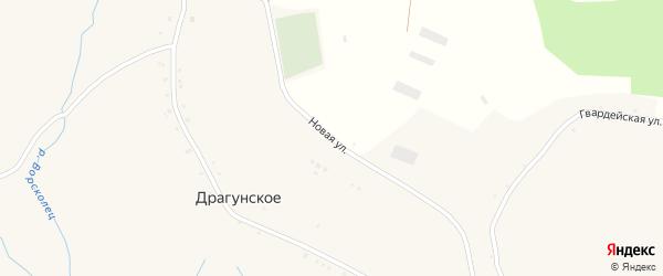Новая улица на карте Драгунского села с номерами домов