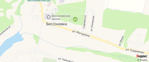 Улица Мичурина на карте села Бессоновки с номерами домов