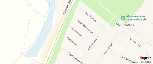 Луговая улица на карте поселка Малиновки с номерами домов