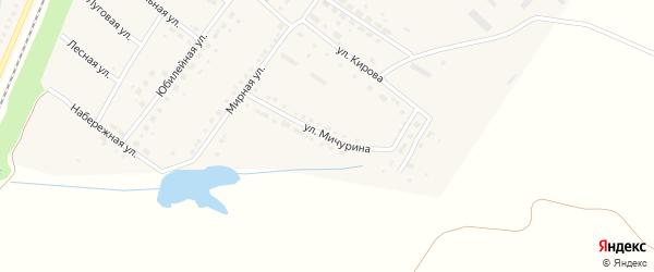 Улица Мичурина на карте поселка Малиновки с номерами домов