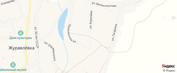 Пушкинская улица на карте села Журавлевки с номерами домов