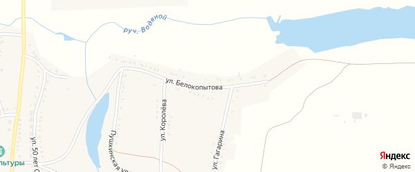 Улица Белокопытова на карте села Журавлевки с номерами домов