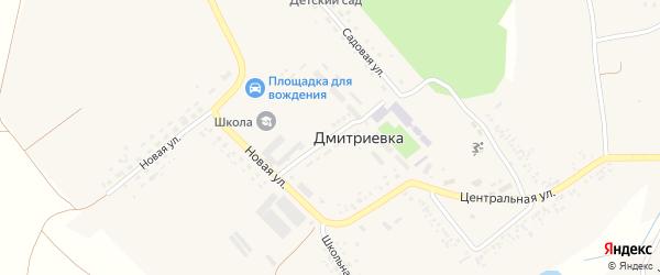 Молодежная улица на карте села Дмитриевки с номерами домов