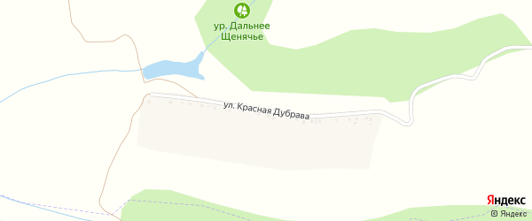 Улица Красная Дубрава на карте села Верхопенья с номерами домов