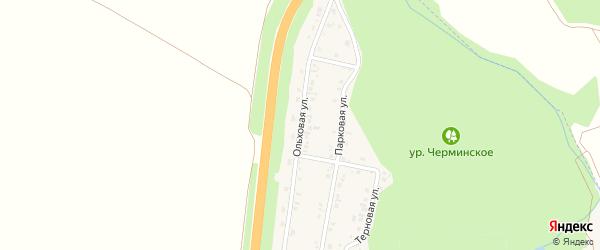 Ольховая улица на карте Политотдельского поселка с номерами домов