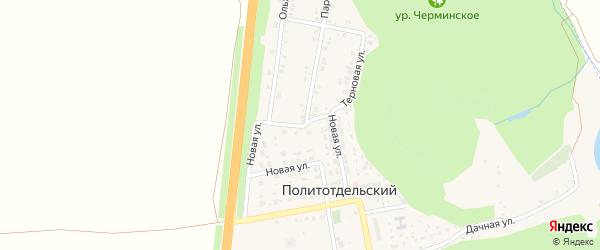 Березовая улица на карте Политотдельского поселка с номерами домов