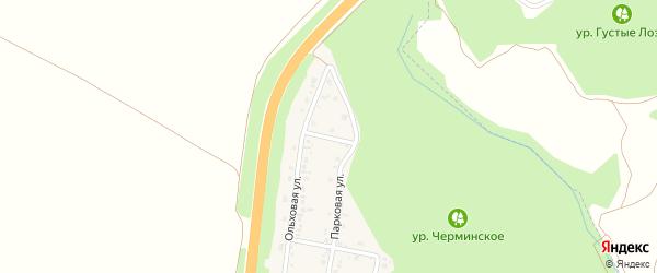 Ольховый переулок на карте Политотдельского поселка с номерами домов
