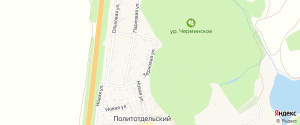 Терновая улица на карте Политотдельского поселка с номерами домов