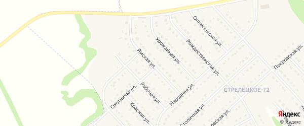 Ямская улица на карте Стрелецкого села с номерами домов