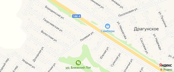 Полевая улица на карте Пушкарного села с номерами домов