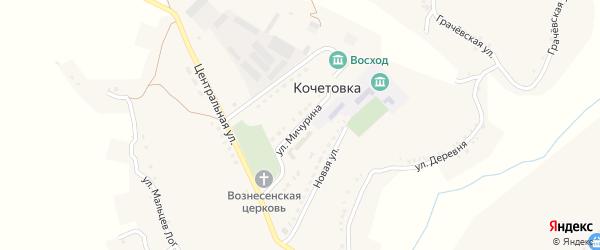 Улица Мичурина на карте села Кочетовка с номерами домов