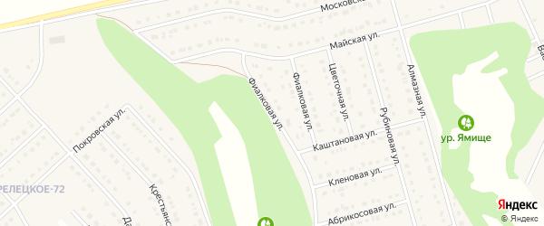 Фиалковая улица на карте Стрелецкого села с номерами домов