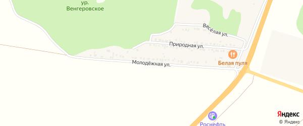 Молодежная улица на карте села Новой Деревни с номерами домов