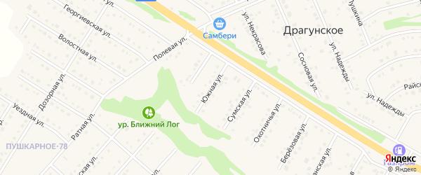 Южная улица на карте Пушкарного села с номерами домов