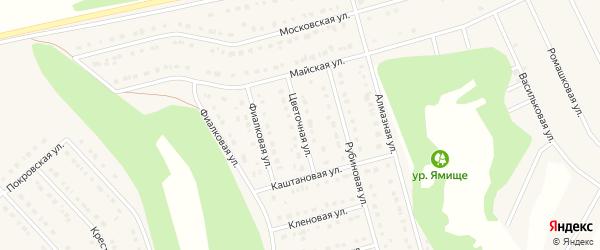 Цветочная улица на карте Стрелецкого села с номерами домов