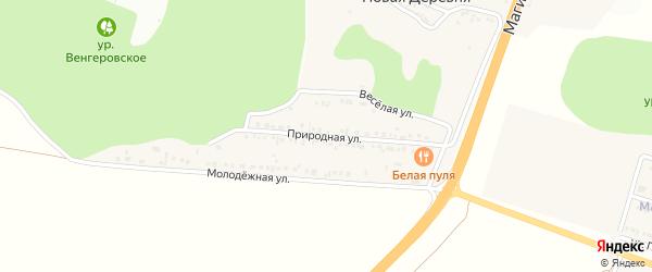Природная улица на карте села Новой Деревни с номерами домов
