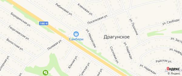 Улица Некрасова на карте Драгунского села с номерами домов