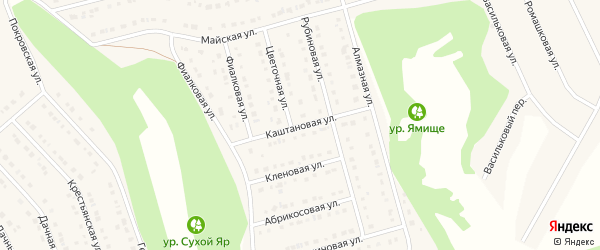 Каштановая улица на карте Стрелецкого села с номерами домов
