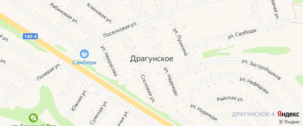 Сосновая улица на карте Драгунского села с номерами домов
