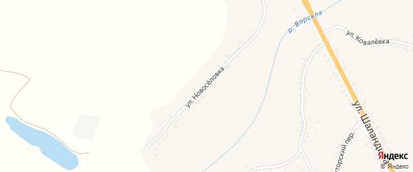 Улица Новоселовка на карте поселка Яковлево с номерами домов