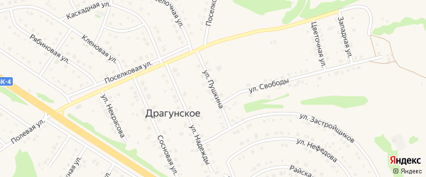 Улица Пушкина на карте Драгунского села с номерами домов