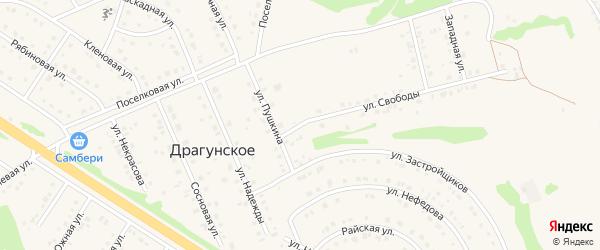 Улица Свободы на карте Драгунского села с номерами домов