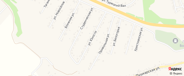 Улица Юности на карте Пушкарного села с номерами домов
