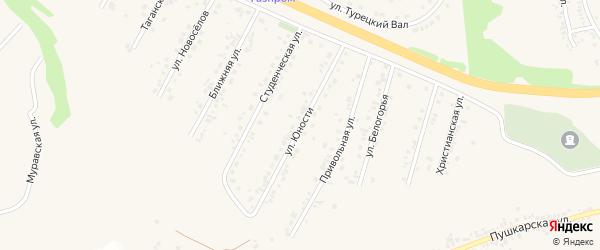 Улица Юности на карте Стрелецкого села с номерами домов