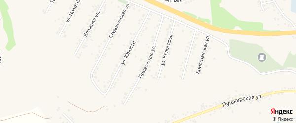 Привольная улица на карте Пушкарного села с номерами домов