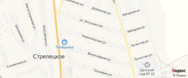Сельская улица на карте Стрелецкого села с номерами домов