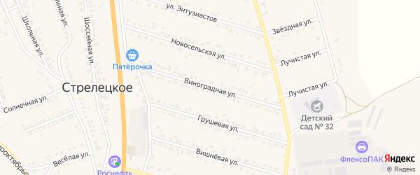 Виноградная улица на карте Стрелецкого села с номерами домов