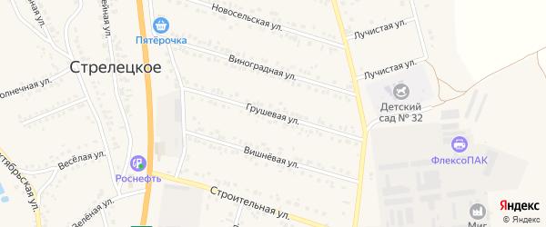Грушевая улица на карте Стрелецкого села с номерами домов