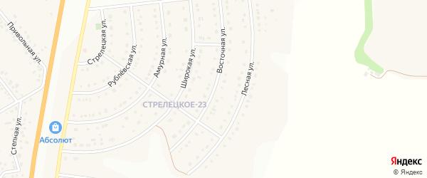 Восточная улица на карте Стрелецкого села с номерами домов