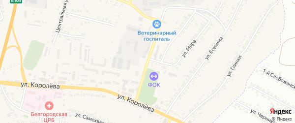 Переулок Королева на карте Стрелецкого села с номерами домов