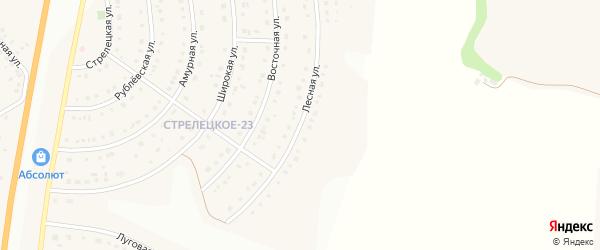 Лесная улица на карте Стрелецкого села с номерами домов