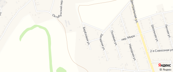 Березовая улица на карте Репного села с номерами домов