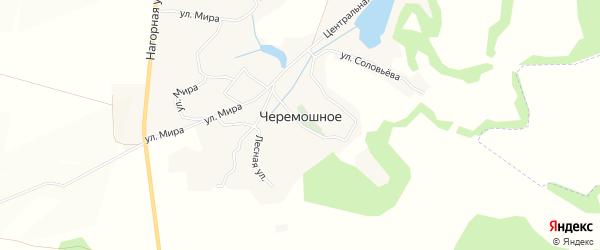 Карта Черемошного села в Белгородской области с улицами и номерами домов