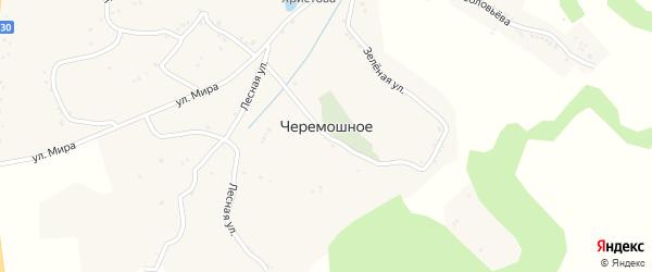 Центральная улица на карте Черемошного села с номерами домов