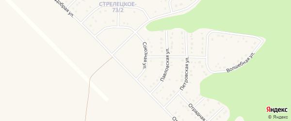 Союзная улица на карте Стрелецкого села с номерами домов