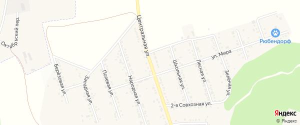 Центральная улица на карте Репного села с номерами домов